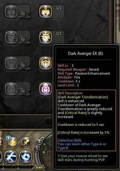 dragon nest dark avenger EX