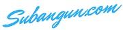 denny subangun web blog